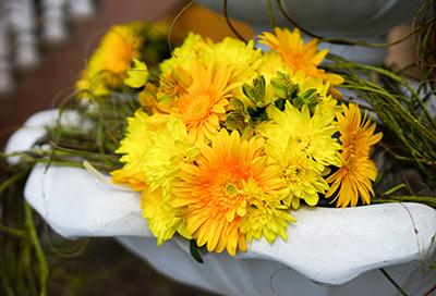 Сватбата на Милена и Николай, Брезник
